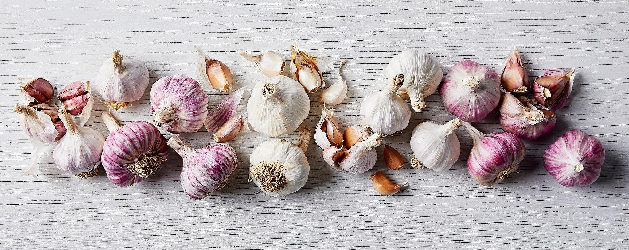 SupaG Garlic Group Aust Rose Aust Purple Aust White Mordo Castano
